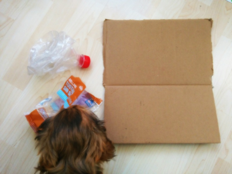 juguetes para cachorro