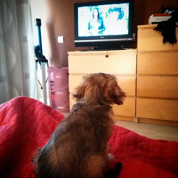 Uma viendo la televisión