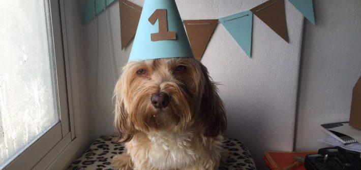 cumpleaños de Uma