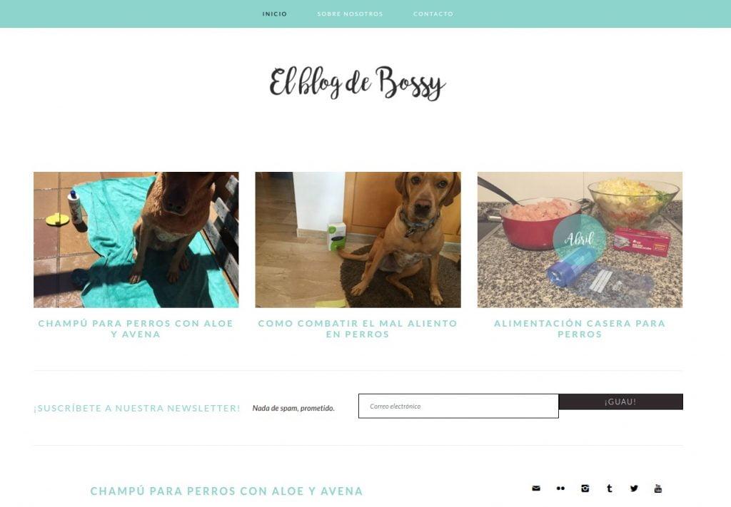 El Blog de Bossy