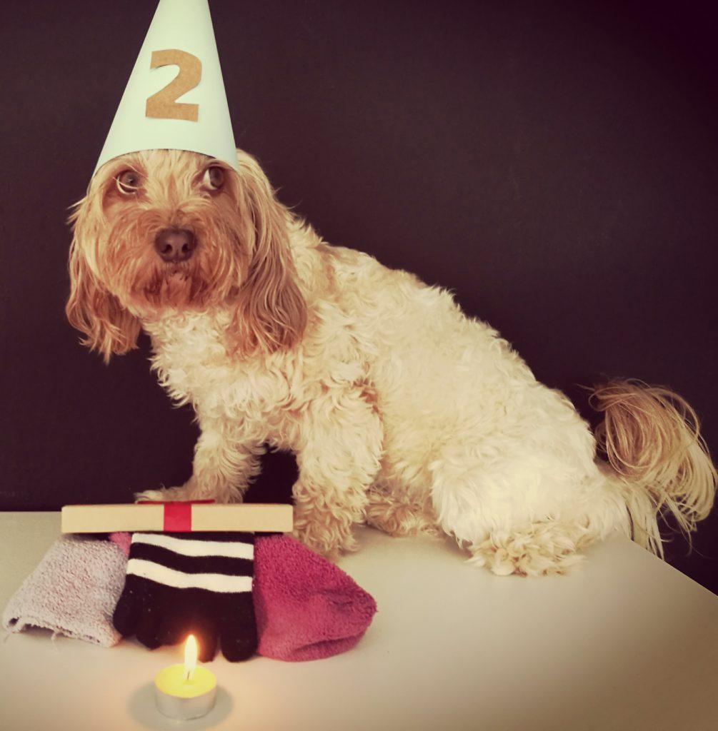 feliz cumpleaños Uma