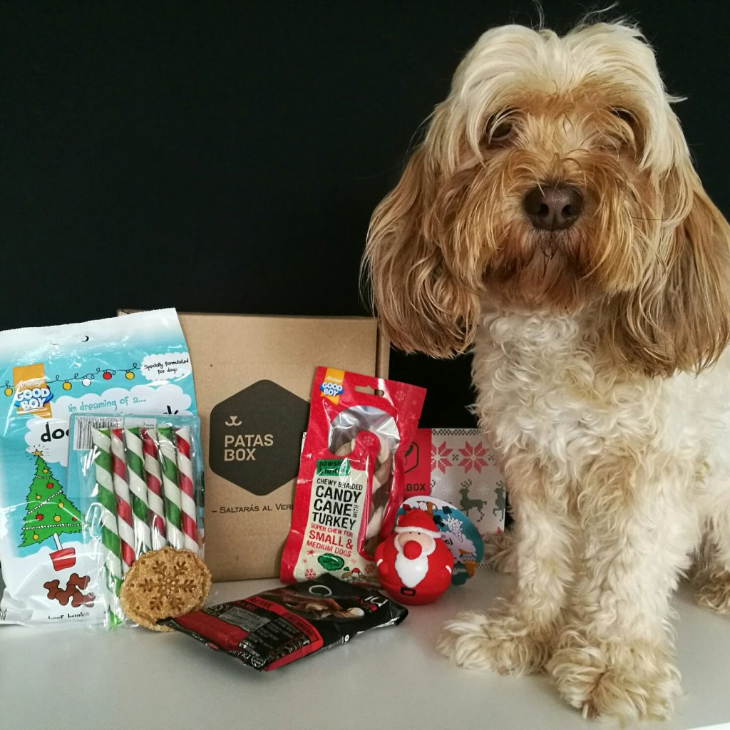caja navideña para perros