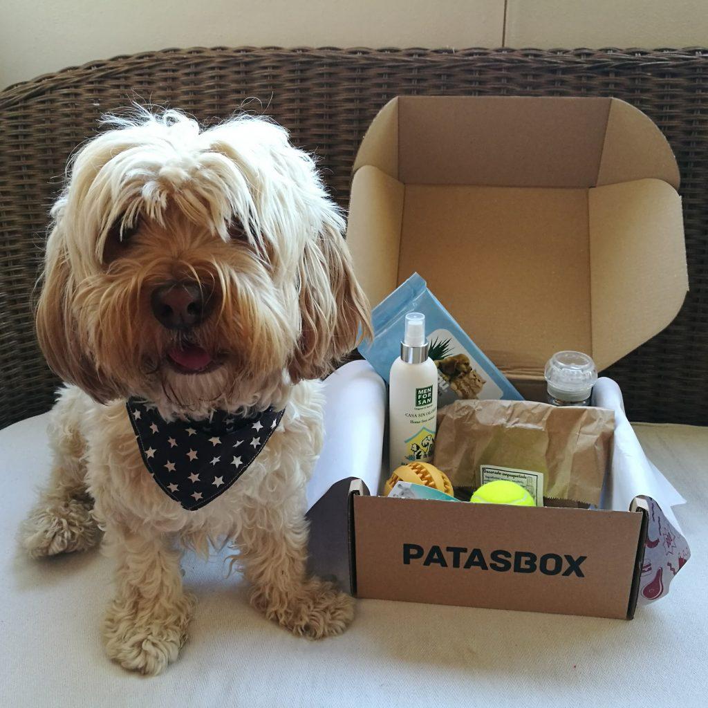 cajas de suscripción mensual para perros