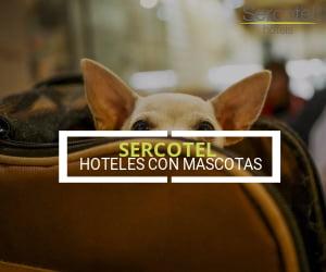 Hoteles que admiten perros