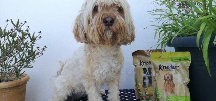 knatur comida premium para perros