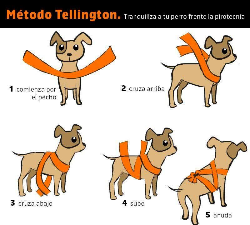 método tellington