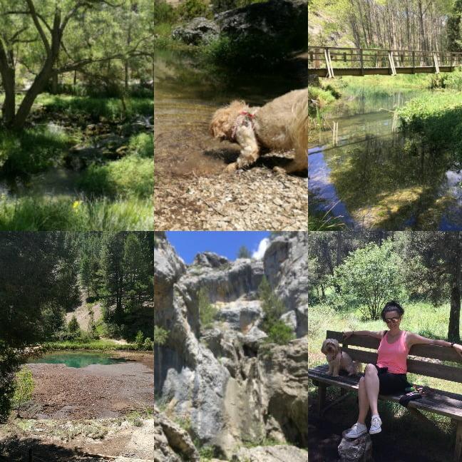 excursión con perro a la Fuentona de Muriel