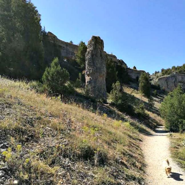excursión con perro al Cañón del Río Lobos