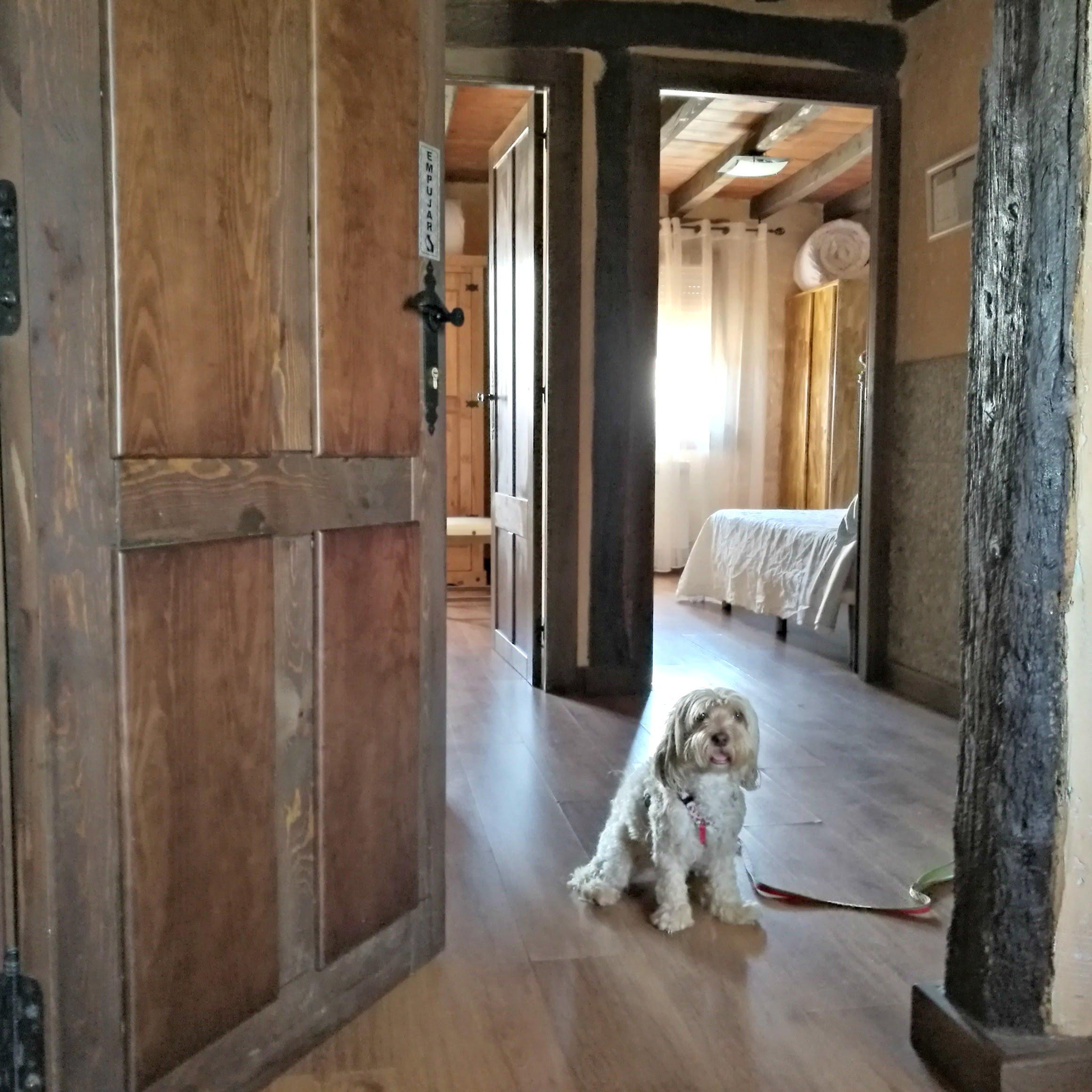 alojamiento con perro en Valdemaluque