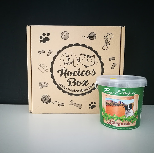 hocicos box