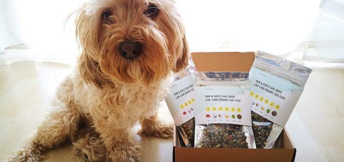 rocketo, comida orgánica para perros