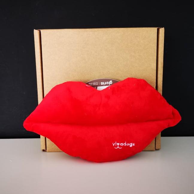 caja san valentin de vivadogs