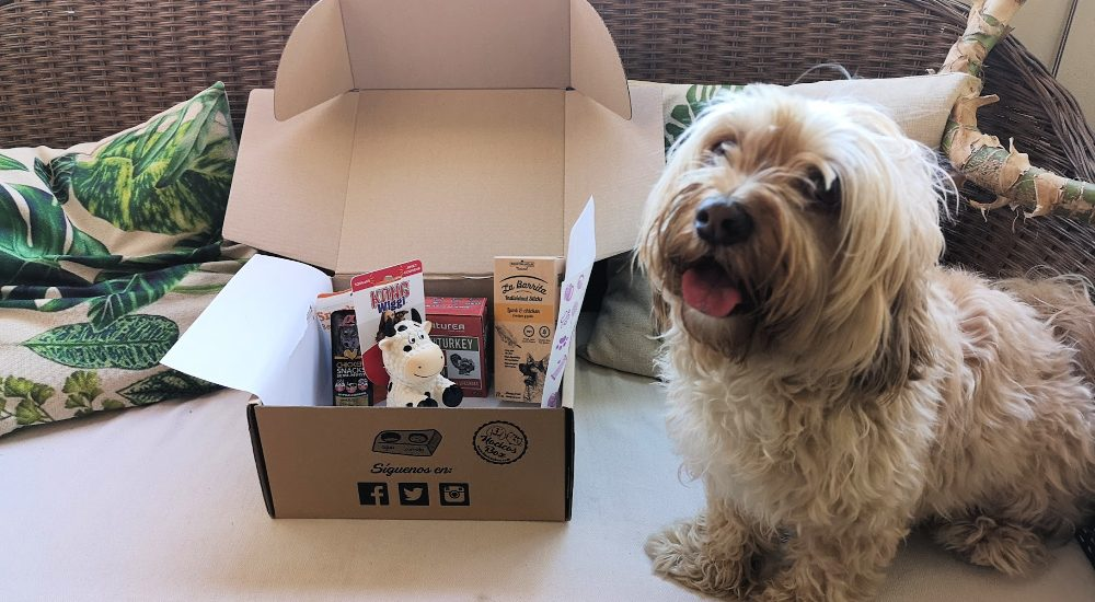 unboxing hocicos box