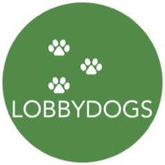 lobby dogs