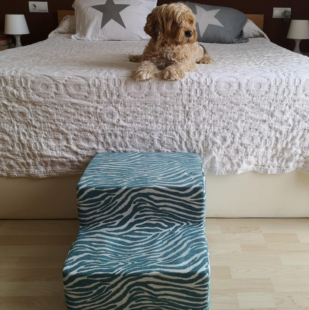 escalera para perros