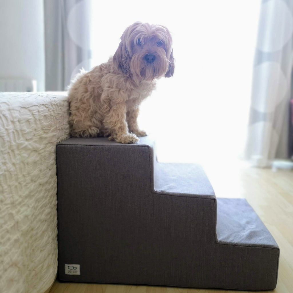 escalera para perros XXL